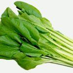 小松菜の下ごしらえの方法は?アク抜きや下茹では必要なの?