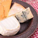 チーズは腐るとどうなる?賞味期限切れは食べちゃダメ?