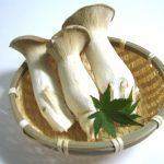 エリンギは腐るとどうなる?白いカビのようなものは食べられる?